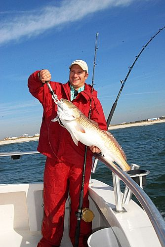 Distraction charters fishing reports orange beach for Gulf coast fishing report
