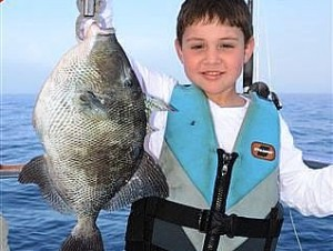 Fishing reports 3 6 distraction charters for Charter fishing gulf shores