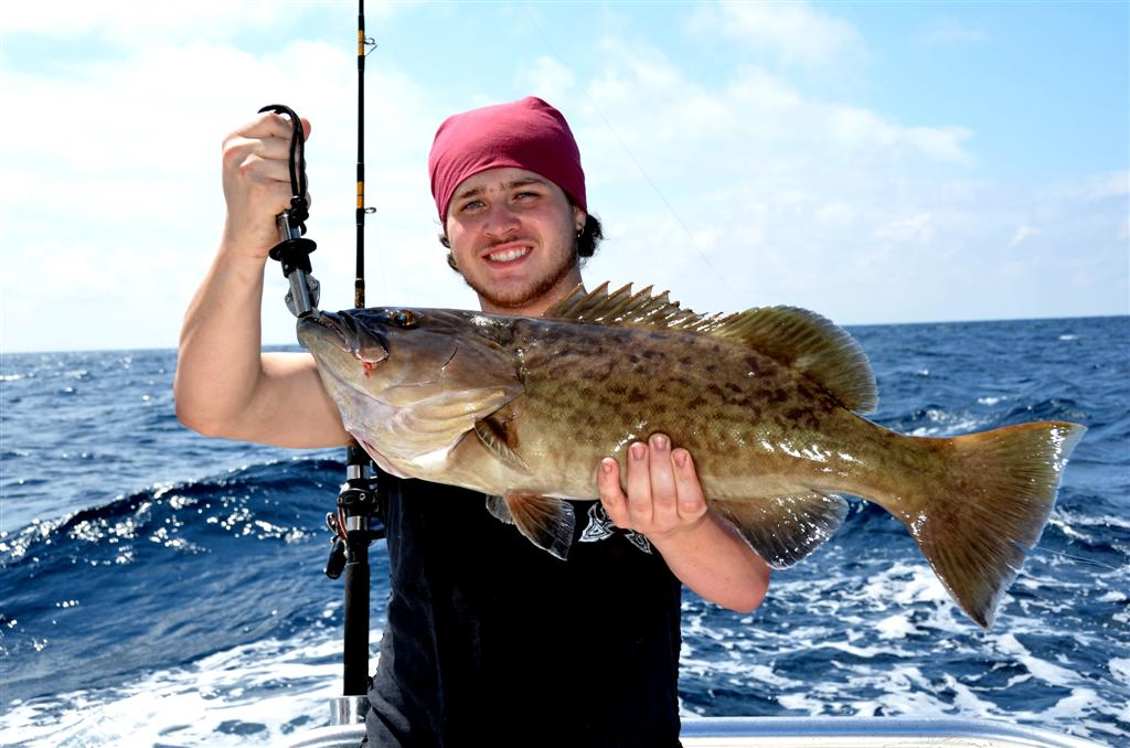 Catching-big-gag-grouper