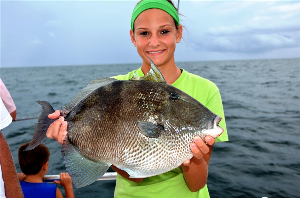light tackle fishing in orange breach, Reel Combo
