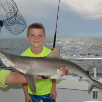 atlantic-sharp-nose-shark-fishing