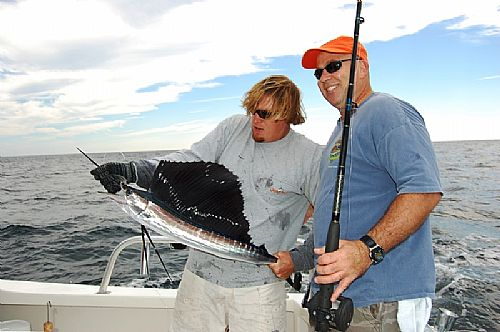 Sailfish Fishing Charters Orange Beach