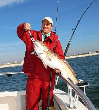 Bullred_fish_arrive_on_the_Alabama_Gulf_Coast_just_in_time_for_Shrimp_Festival