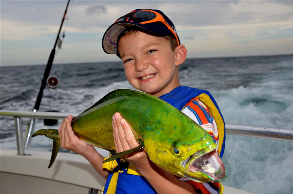 little boy holding mahi mahi or dolphin fish.