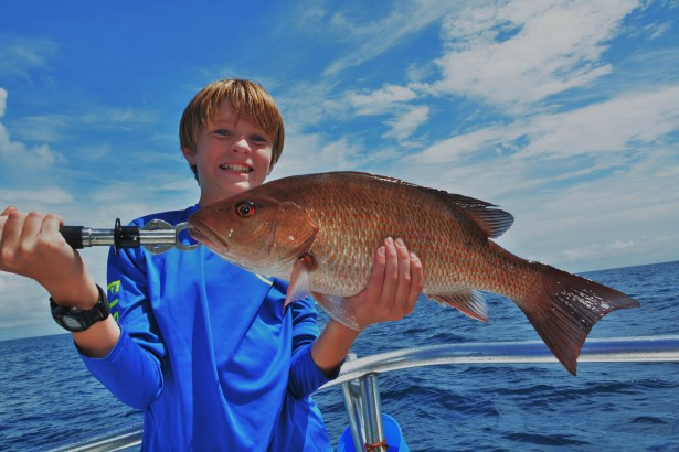 mangrove-snapper-orange-beach-fishing