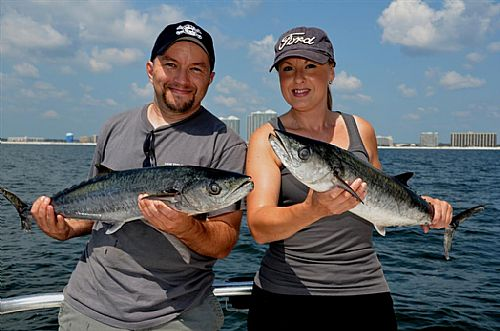 Orange Beach Fishing Boats offer Trolling during the Fall