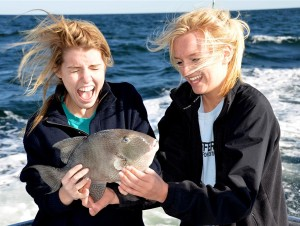 Trigger Fish Fun