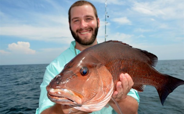 Black Snapper Fishing