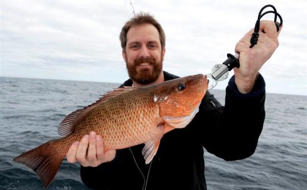 Gulf Shores Spring Break Fishing 2014 Begins
