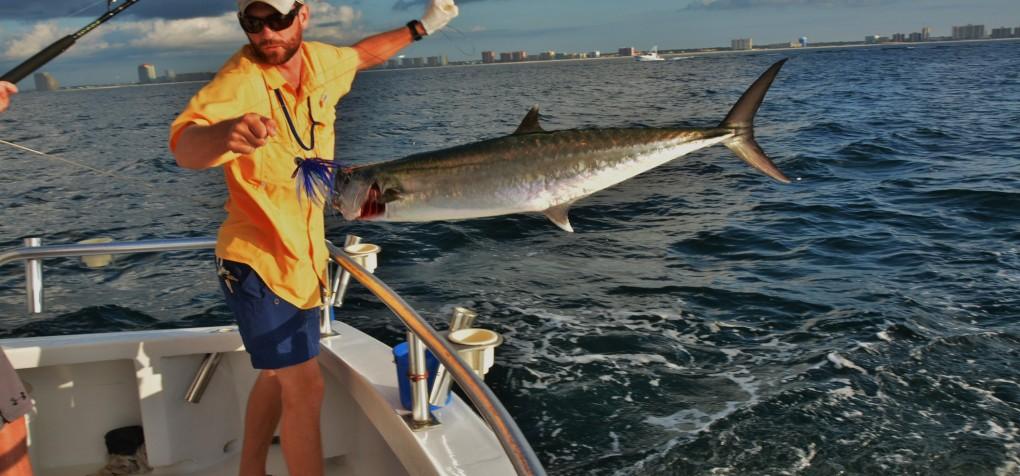 Orange beach fishing charter boat family deep sea for Orange beach fishing report
