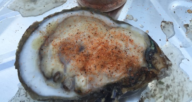 raw oysters with heifer dust seasoning
