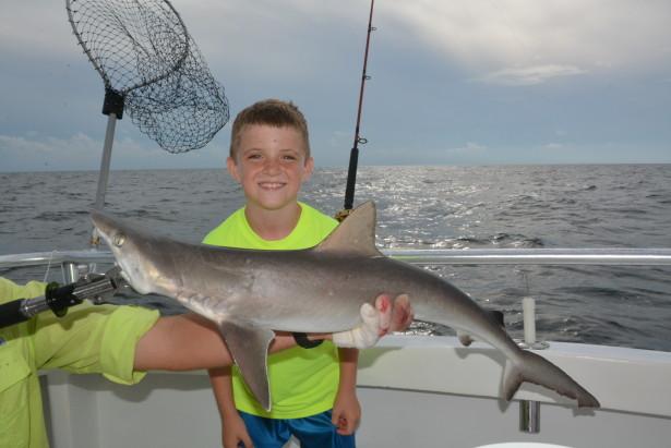 atlantic-sharp-nose-shark-fishing