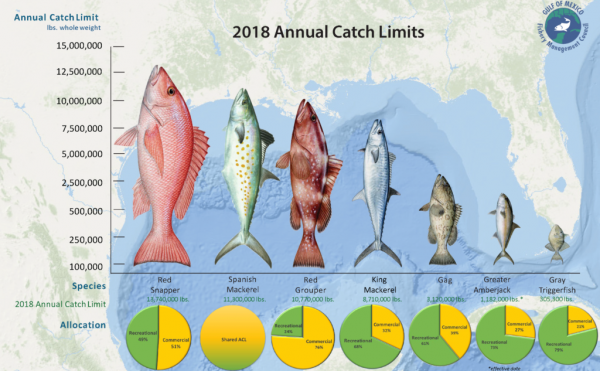 NOAA Fisheries Gives Gulf Anglers More Access To Fish