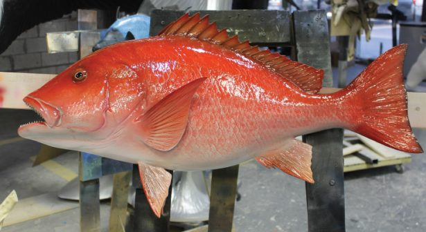 red-snapper-fish-mount